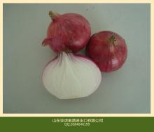 red onion exporter china cheap red onion for dubai to malaysia for singapore