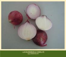 small red onion to dubai for east timor export to thailand for indonesia