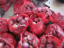 Sell Different Kinds of Red Onions