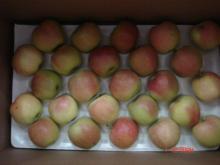 Royal Fresh Gala Apple coming