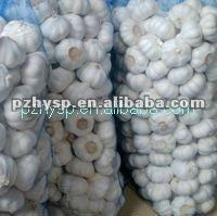 The  Original  production base of Cold Garlic (lowest price)
