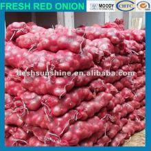 fresh red big onion producer,good quality,cheap price