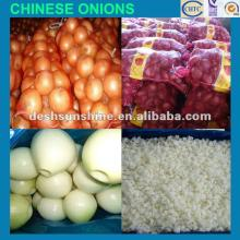 2012 New Crop Chinese types of onions,good quality,cheap price