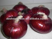 2012 New Crop Grade A Chinese fresh Red Big Onion(50-70,70-90mm)