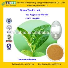 GMP Manufacturer Supply Natural Low Price Green Tea Extract Powder