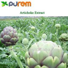 Artichoke   Extract  2.5,5% Cynarin  HPLC