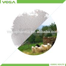 Animal Product Vitamin E 50% Manufacturer with Free Sample