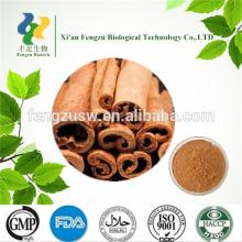 High quality natural cinnamon extract