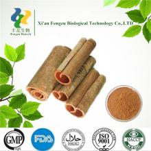 Best quality product cinnamon powder 20: 1
