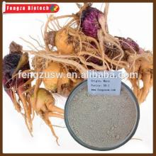 High qualtiy  maca  powder,  Peru  black  maca  extract100:1