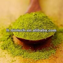 Top Quality  Instant   Green   Tea   Extract   Powder