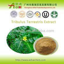 Supplement man power tribulus terrestris extract