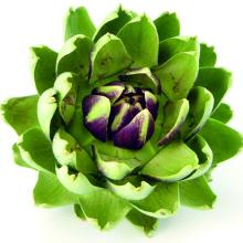 Artichoke Leaf Extract Biobenefity Natural Cosmetic Ingredient