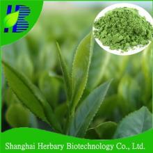 Pure natural white tea powder