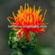 Hot sale  Safflower  flower tea powder/Herb medicine