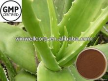 aloe vera  extract   powder  manufacturer