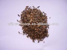 Herbal Burdock Root Extract