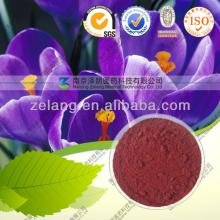 Saffron 95% CAS:42553-65-1 Crocetin digentibiose ester