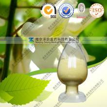 Natural  Rutin   NF11  /DAB10 / EP6.0
