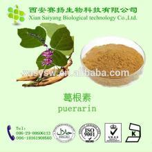 100% Natural Kudzu Root Extract Puerarin Powder 40%-98%