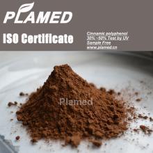 Natural cinnamon bark  extract   powder  manufacturers,food supplement cinnamon bark  extract   powder