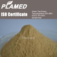 Super instant green tea extract powder supplier,100% pure instant green tea extract powder