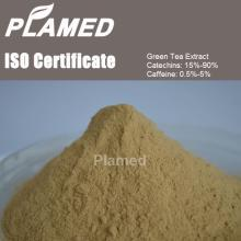 Natural instant green tea extract powder manufacturers,food supplement instant green tea extract pow