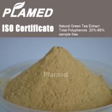 Buy white tea extract powder,raw material white tea extract