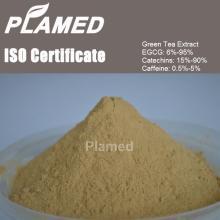 Natural oolong tea extract powder manufacturers,food supplement oolong tea extract powder