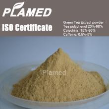 Buy instant green tea extract powder,raw material instant green tea extract