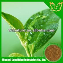 Terrific Quality ! 100%high pure powder instant green tea extract/instant green tea extract powder w
