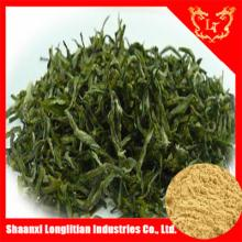 High Quality and Organic green tea powder Bulk For Cancer Prevention