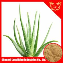 Hot  sale low price aloe vera extract aloin powder ,aloe extract,maintain beauty and keep young