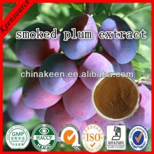 Smoked Plum Extract/ Dark Plum Fruit Extract /Black Plum Extarct
