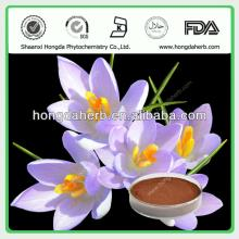 High Quality Saffron Extract Power