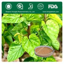 Hot Selling Mulberry Leaf Extract Powder