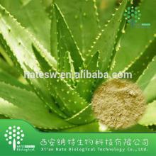 Competitve price best seller 95% aloe emodin Aloe vera Extract Powder