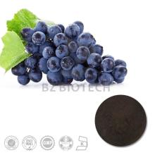 100% Natural Pure High Quality Black Currant P.E. with 5%, 10%, 15%, 20%, 25% Anthocyanins UV/ HPLC