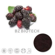 100% Natural High Quality Mulberry Fruit Extract with 5%, 10%, 15%, 20%, 25% Anthocyanins
