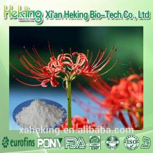 Offering High Quality Lycoris Radiata Extract powder