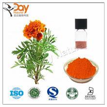 Eye Health Marigold Extract Lutein Powder