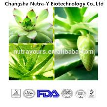Hot Product Aloe Vera Extract With Competitive Price, Aloin Powder