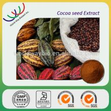 hot sale free sample 100% natural best quality alkalized brands of cocoa powder made in China