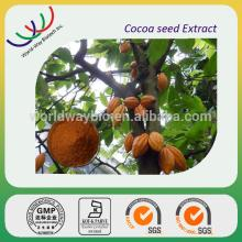 hot sale free sample 100% natural best quality alkalized cocoa powder made in China