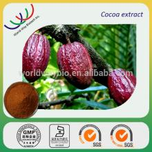GMP factory supply high qualtiy 10~20% theobromine alkalized cocoa powder