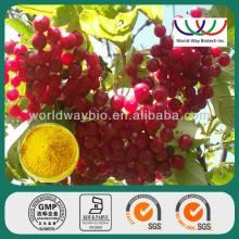 Quality Schisandra Chinensis Baill. shisandra berry ext. schisandra PE with 1%to 9% schisandrins sch