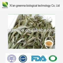 Instant  White   Tea  Powder,  White   Tea  Leaf Extract Powder,  White   Tea  Powder