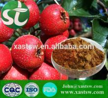 Pure natural hawthorn leaves extract