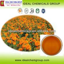 Marigold Extract  xanthophyll s lutein powder