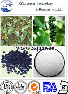 Black pepper extract 95% and manufacture supply pepper extract
